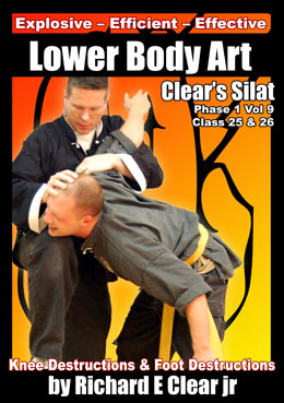 Silat Lower Body Art