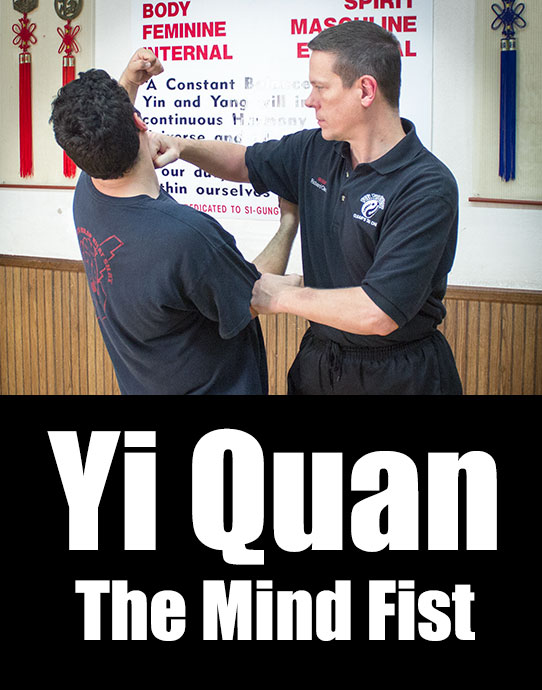 Learn Yi Quan